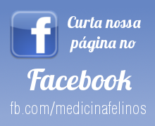 Banner anúncio facebook